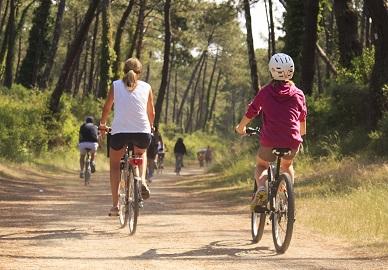 promenade en vélo dans la forêt